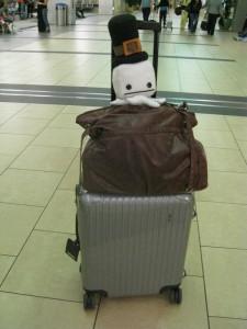 Hatty prepares for departure!